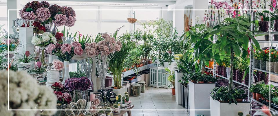 Wnętrze kwiaciarni